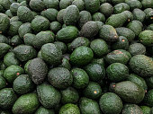 Fresh avocado as a background for sale in the supermarket