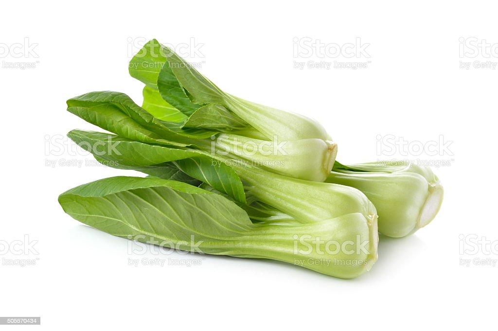 fresh baby Bok choy (Chinese cabbage) on white background stock photo