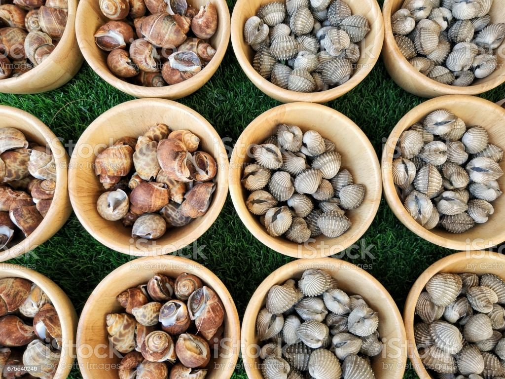 Fresh Babylonia areolata and fresh cockles in market stock photo