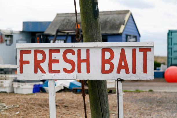Fresh Bait Sign Fresh Bait Sign on the roadside - UK fishing bait stock pictures, royalty-free photos & images