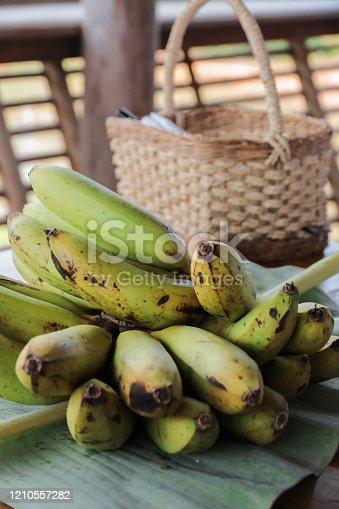 Fresh bananas from organic Farm