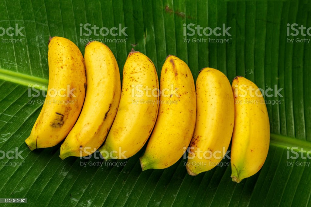 fresh bananas on green banana leaves, top view