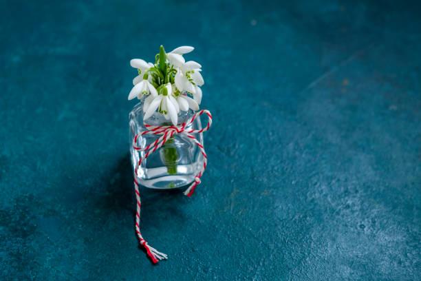 Buquê fresco e bonito da primeira floresta da primavera lança flores com martisor de cordão vermelho e branco - símbolo tradicional do primeiro dia de primavera em fundo azul clássico - foto de acervo