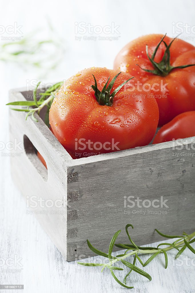 fresh beef tomatoes in box stock photo