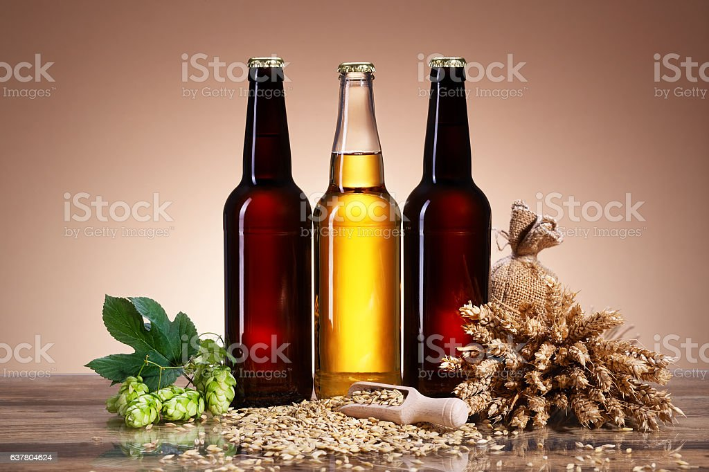 Fresh beer and brewing ingredients stock photo