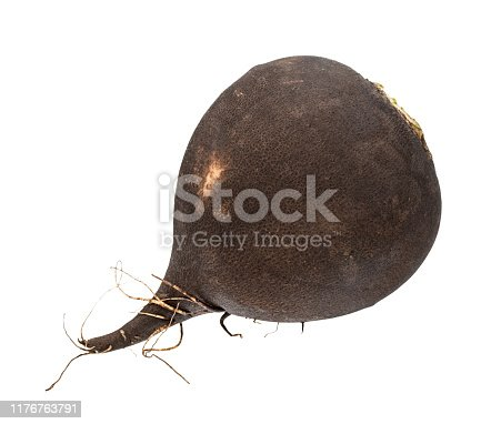 fresh black radish taproot isolated on white background