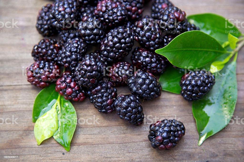 Fresh Black Raspberries stock photo