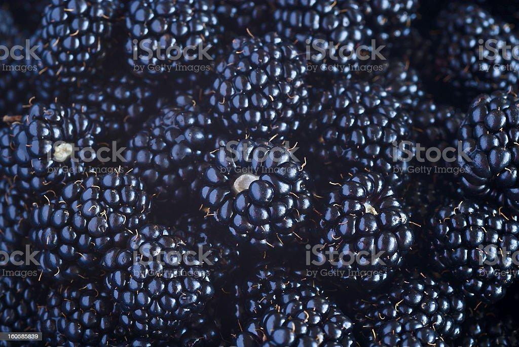 Fresh Blackberries view background stock photo