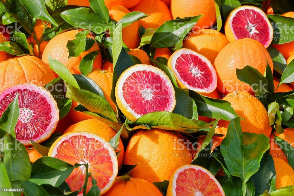 Frisches Blutorangen - Zitrusfrüchte – Foto