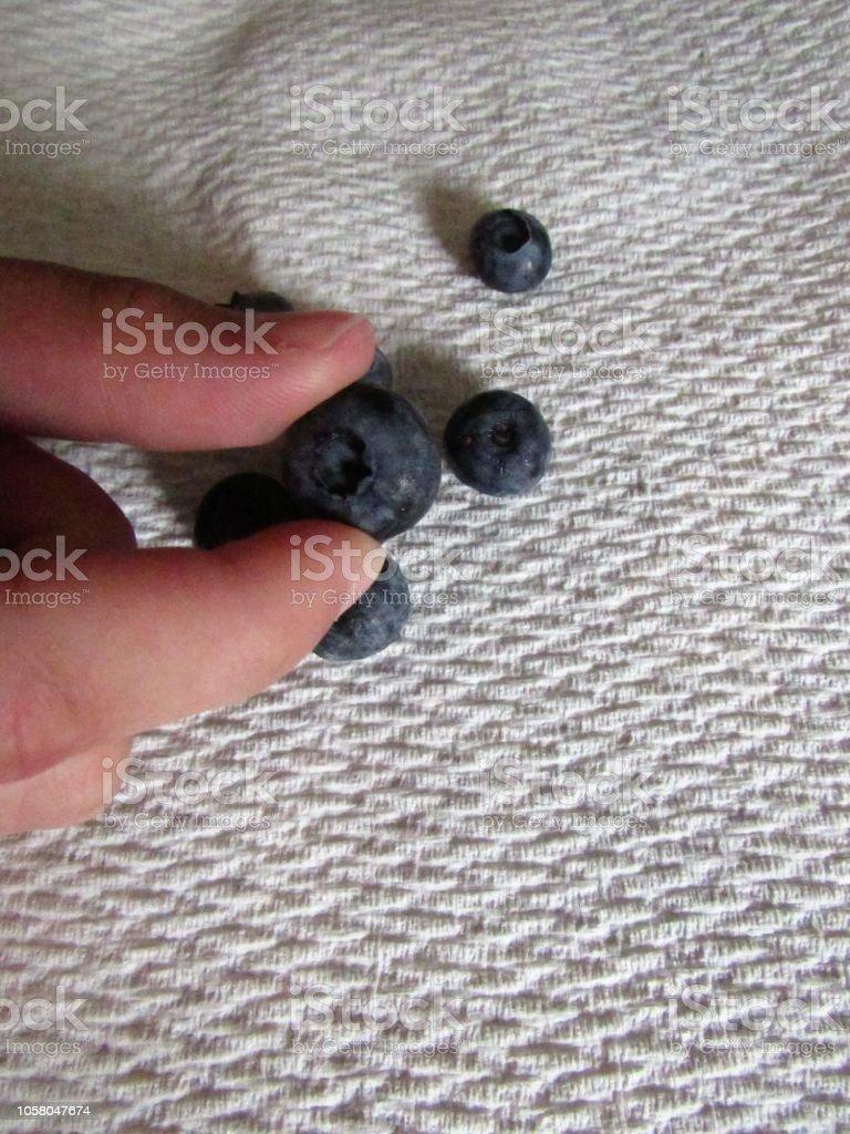 Fresh Bluberries stock photo