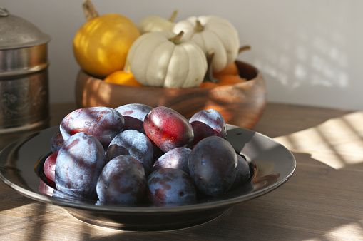 Fresh blue plums in black plate and mini pumpkins in sunlight with shadows of shutters on wood table.