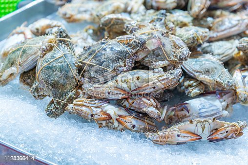 Selective focus of fresh blue swimming crab on ice at street sea food market