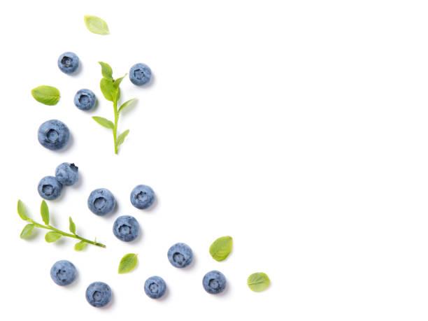 arándanos frescos y hojas, marco de berry ornamento sobre fondo blanco, closeup, vista superior - arándano fotografías e imágenes de stock