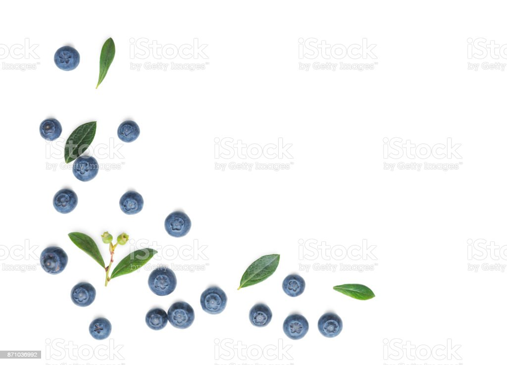 Fresh Blueberries  on white stock photo