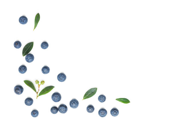 fresh blueberries  on white - blueberry stock pictures, royalty-free photos & images