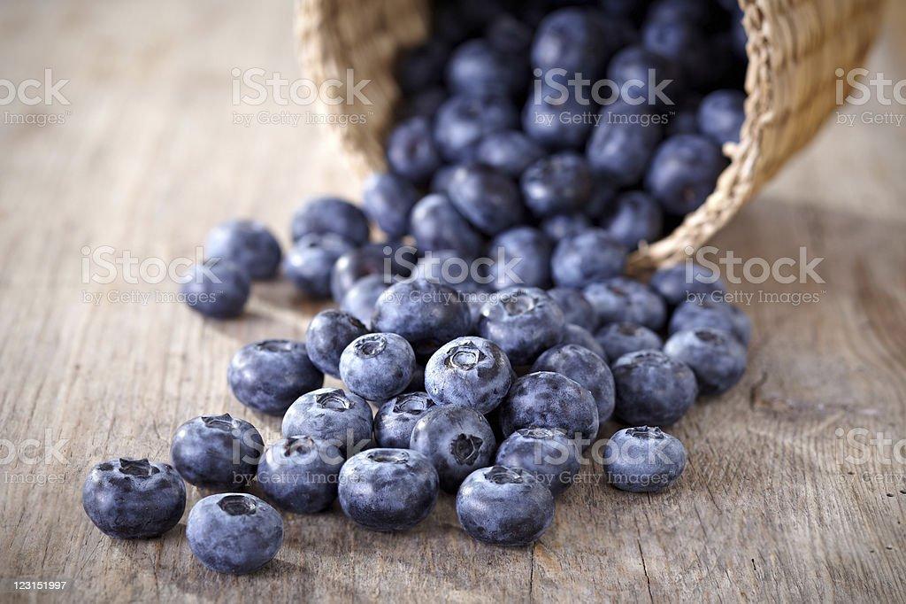 fresh blueberries - Royalty-free Autumn Stock Photo