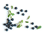 Fresh blueberries with green leaves leaves, organic blueberry border pattern isolated on white background, top view.