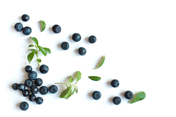 fresh blueberries with leaves - blueberry stock pictures, royalty-free photos & images