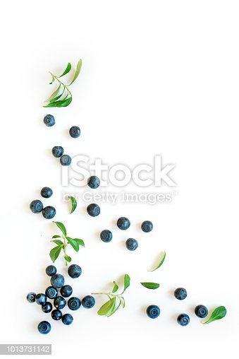 828761410 istock photo Fresh blueberries with leaves 1013731142