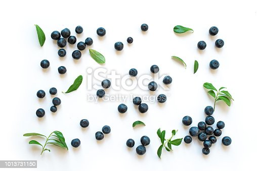 828761410 istock photo Fresh blueberries with leaves 1013731150