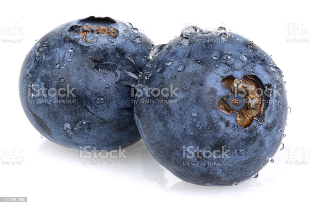 Fresh blueberries with water drop stock photo