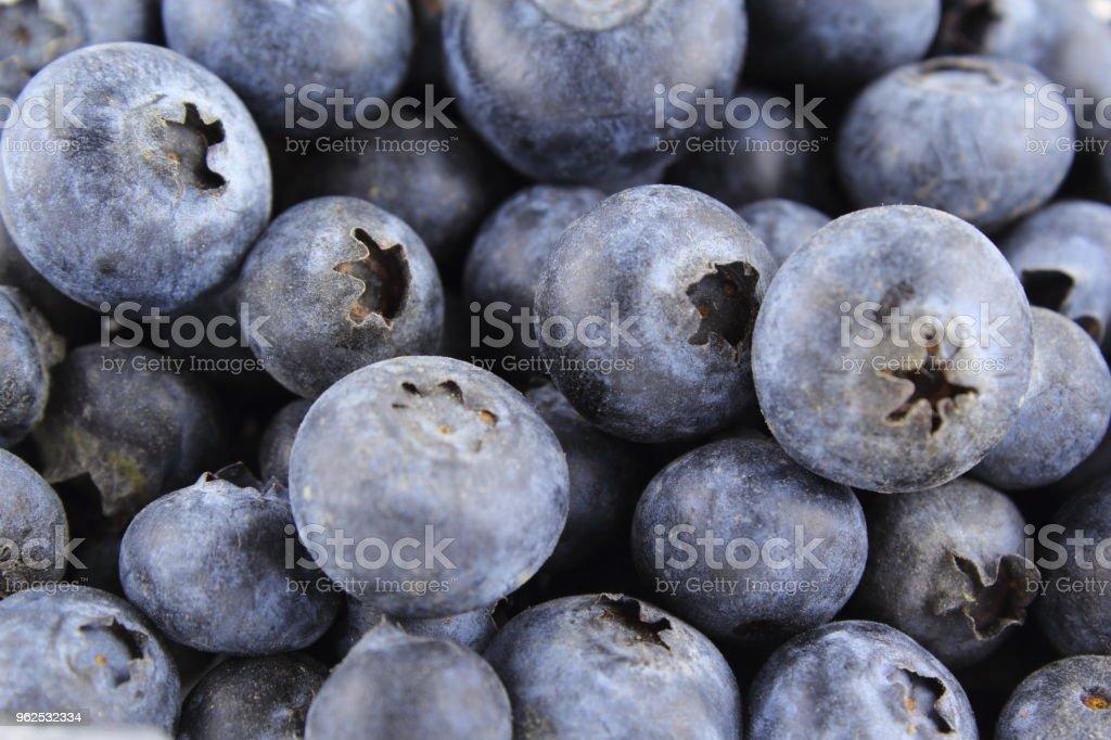 textura de fundo do mirtilo fresco frutas closeup comida - Foto de stock de Alemanha royalty-free