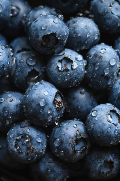 Fresh blueberry with water drops stock photo