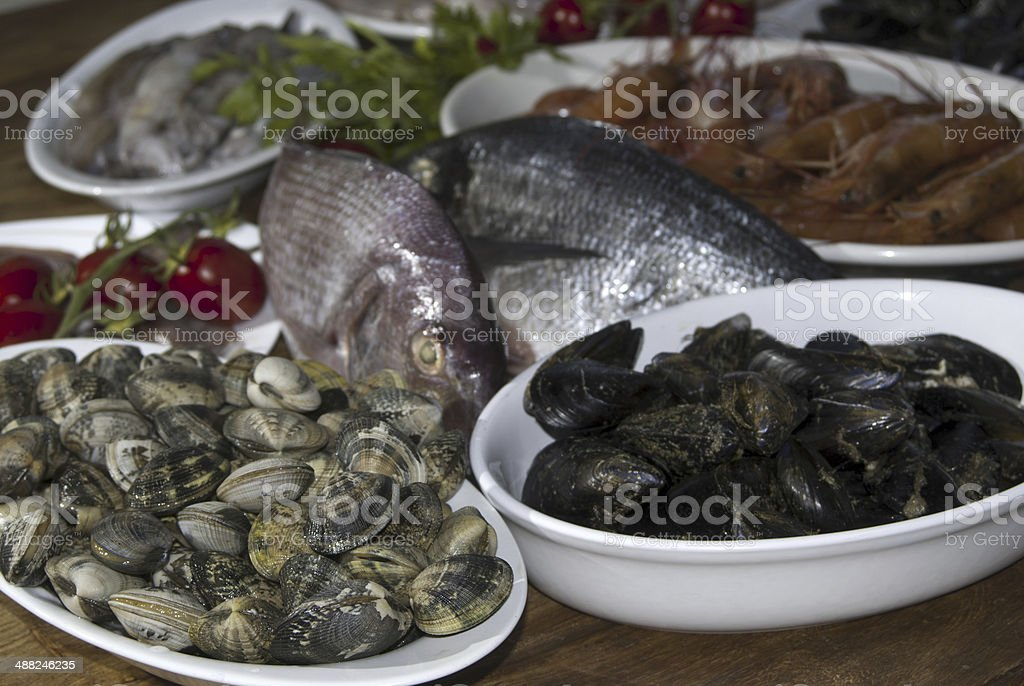 fresh bluefish and shellfishes stock photo