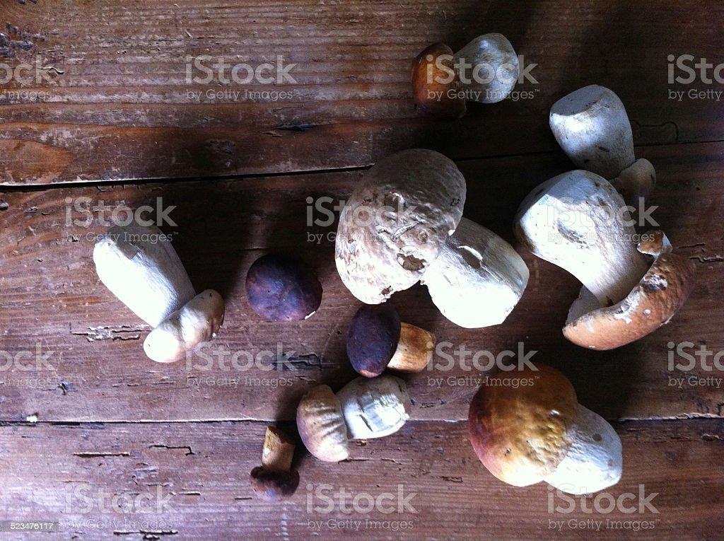 Boleto cogumelos frescos na mesa de madeira - foto de acervo
