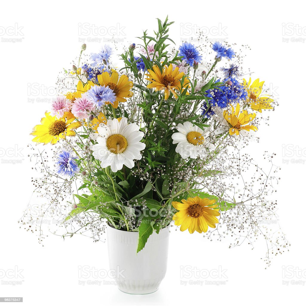 Fresh bouquet Isolated on white background royalty-free stock photo
