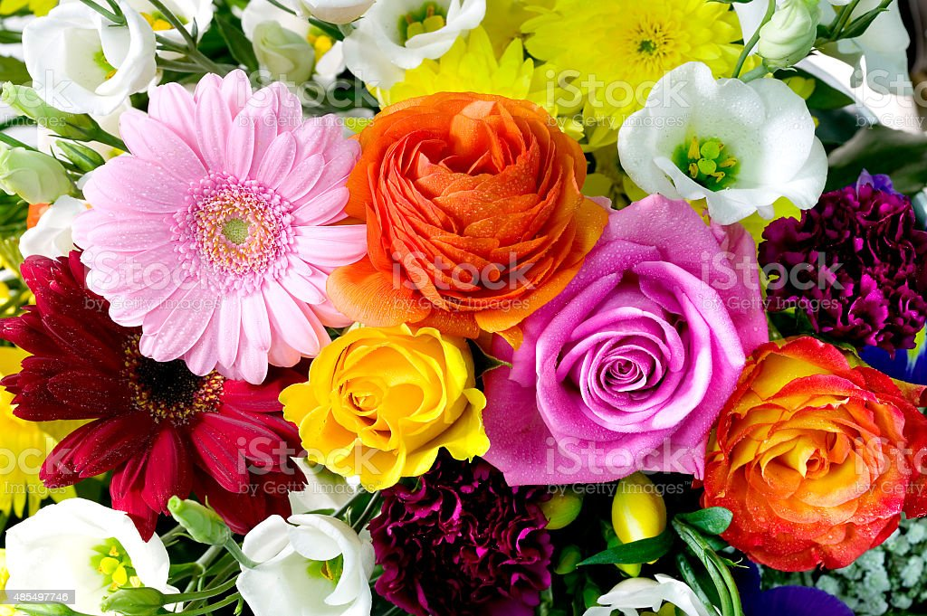 Fresh bouquet of flowers multicolour stock photo