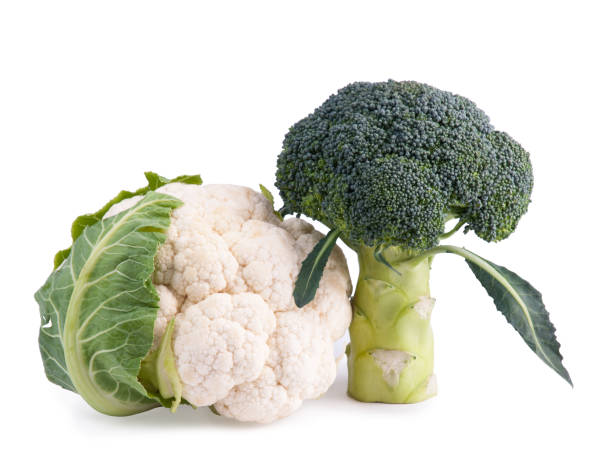 fresh broccoli and cauliflower isolated on white - broccoli white background stock photos and pictures