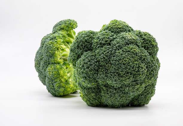 Frischer Brokkoli isoliert auf weißem Hintergrund – Foto
