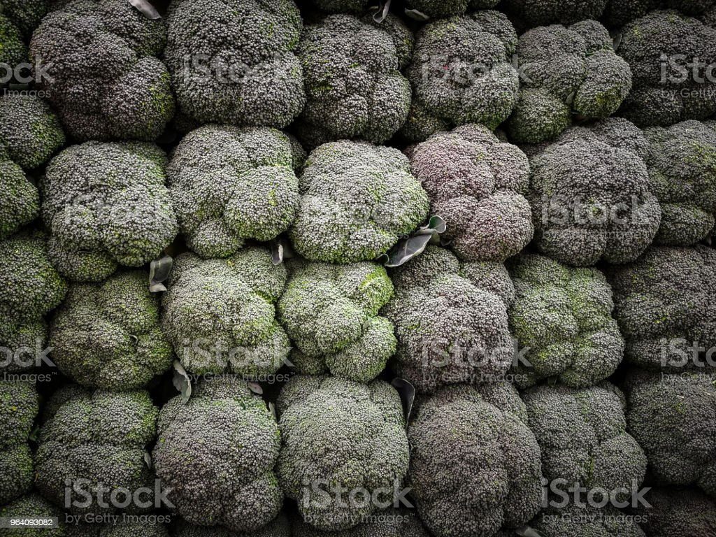 Fresh broccoli - Royalty-free Agriculture Stock Photo