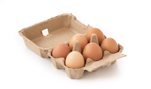 frische braune eier im karton auf isolierten - eierverpackung stock-fotos und bilder