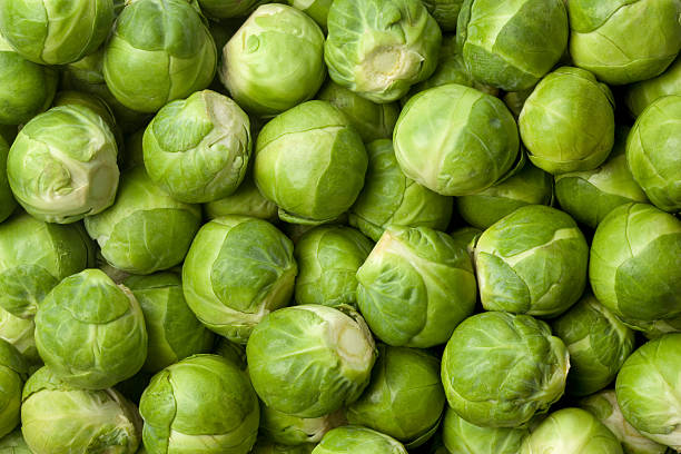 Fresh Brussel sprouts stock photo