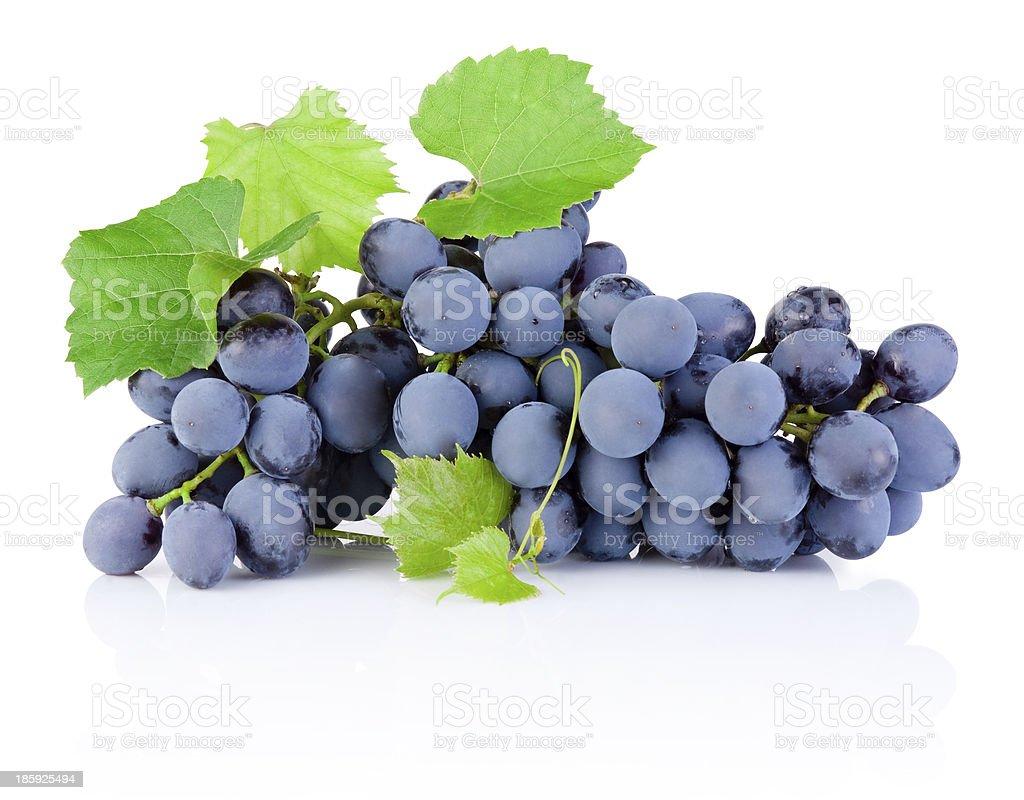 Fresca racimo de uvas con hojas aisladas sobre fondo blanco - Foto de stock de Agricultura libre de derechos