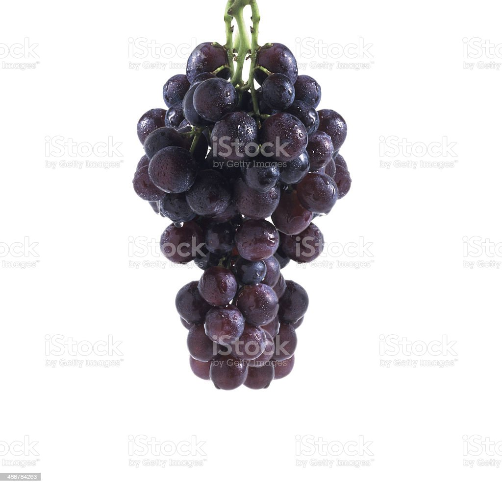 Fresh bunch of red wine on a white background royalty-free stock photo