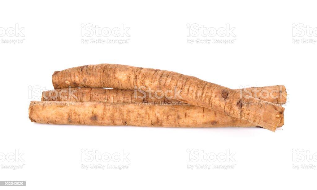 fresh burdock root or Gobo on white background - foto stock