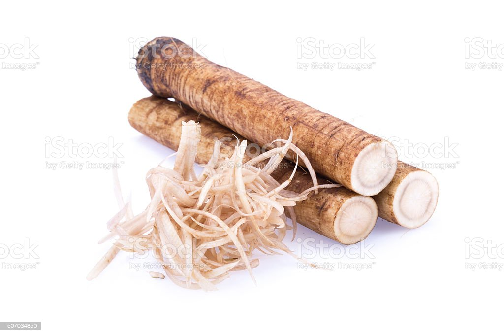 Fresh Burdock roots on white background stock photo
