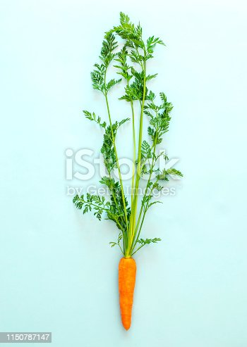 Fresh carrot on pastel blue background, top view, copy space, healthy food concept