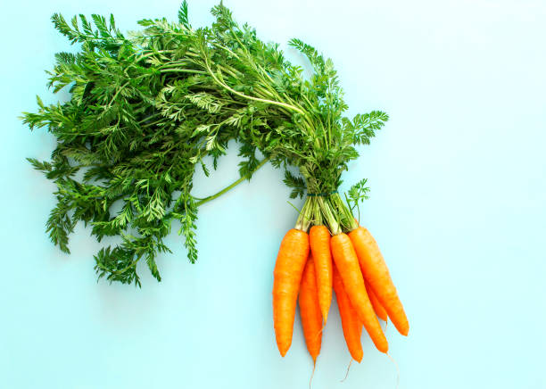 Fresh carrot on pastel blue background, top view, copy space, healthy food concept stock photo