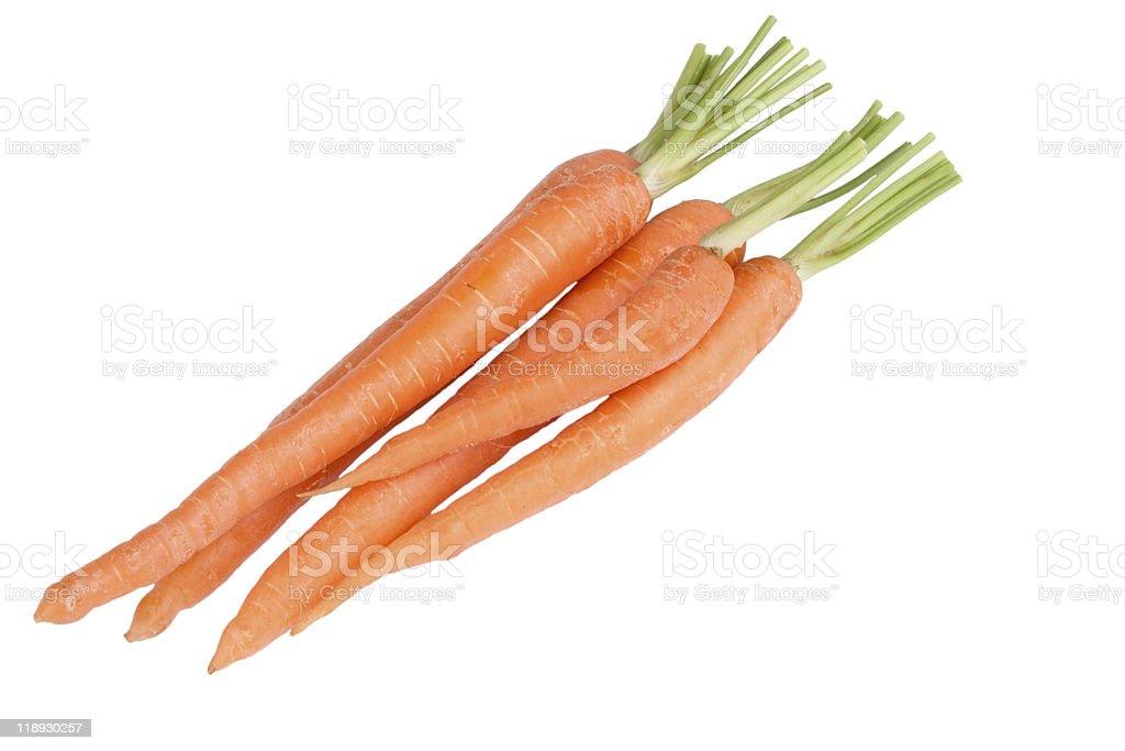 Fresh carrot stock photo