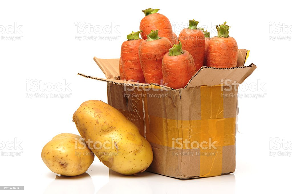fresh carrot  photo libre de droits