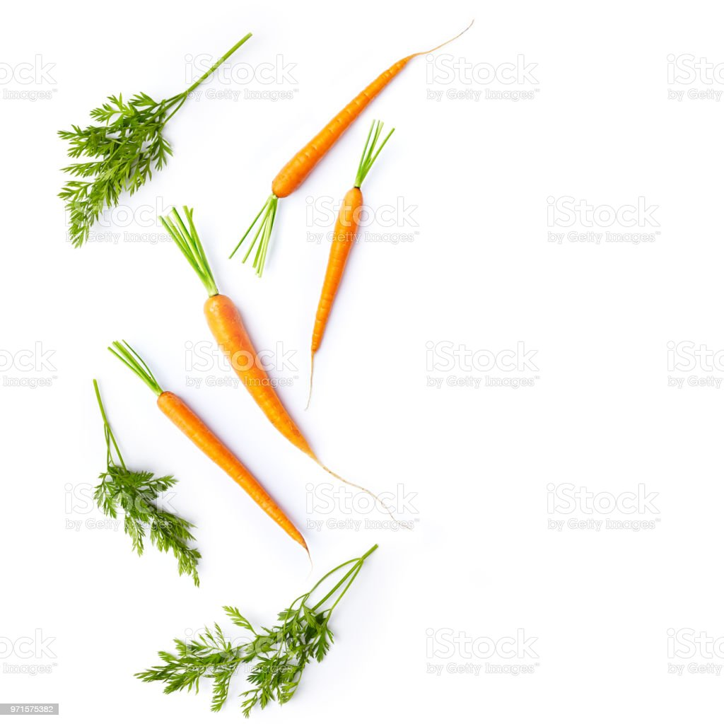 Fresh carrots and carrot stalks on white background; flat lay; organic veggetables stock photo
