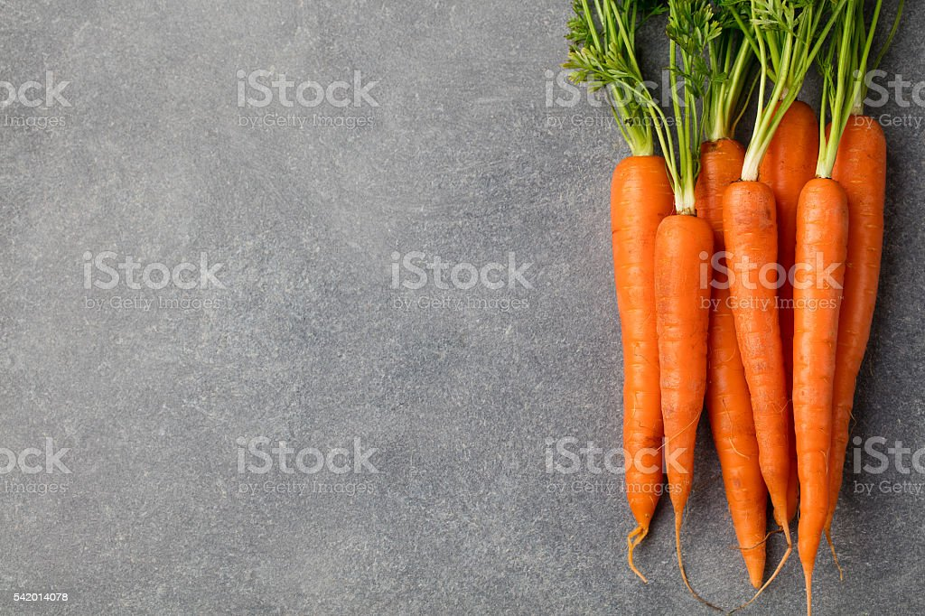 Fresh carrots bunch on a grey stone background Copy space stock photo