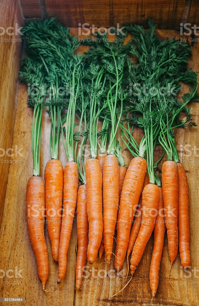 Fresh carrots on a wooden background