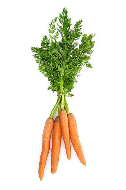 cenouras frescas - cenoura imagens e fotografias de stock