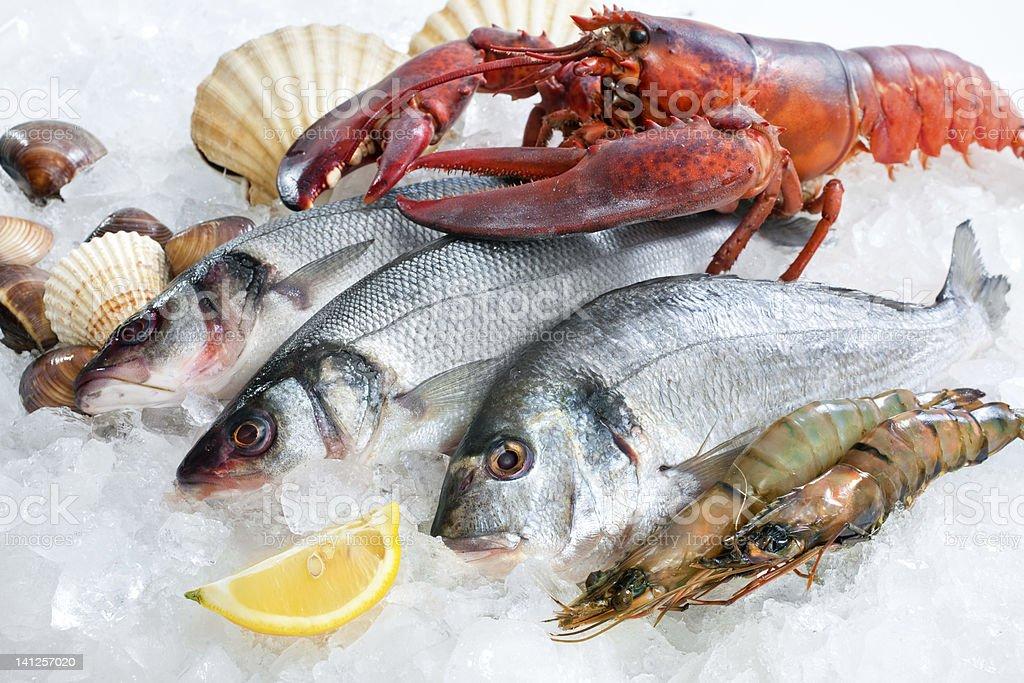 Fresh catch royalty-free stock photo