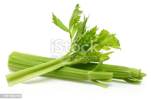 Fresh celery stalks isolated on white background. Studio shot.